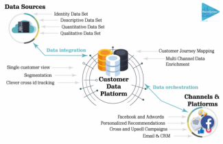 cdp and marketing automation